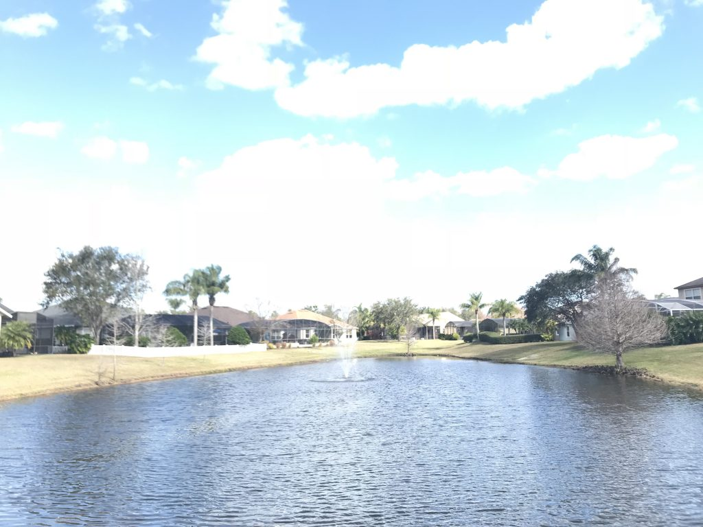 Orlando Property Management 14124-03