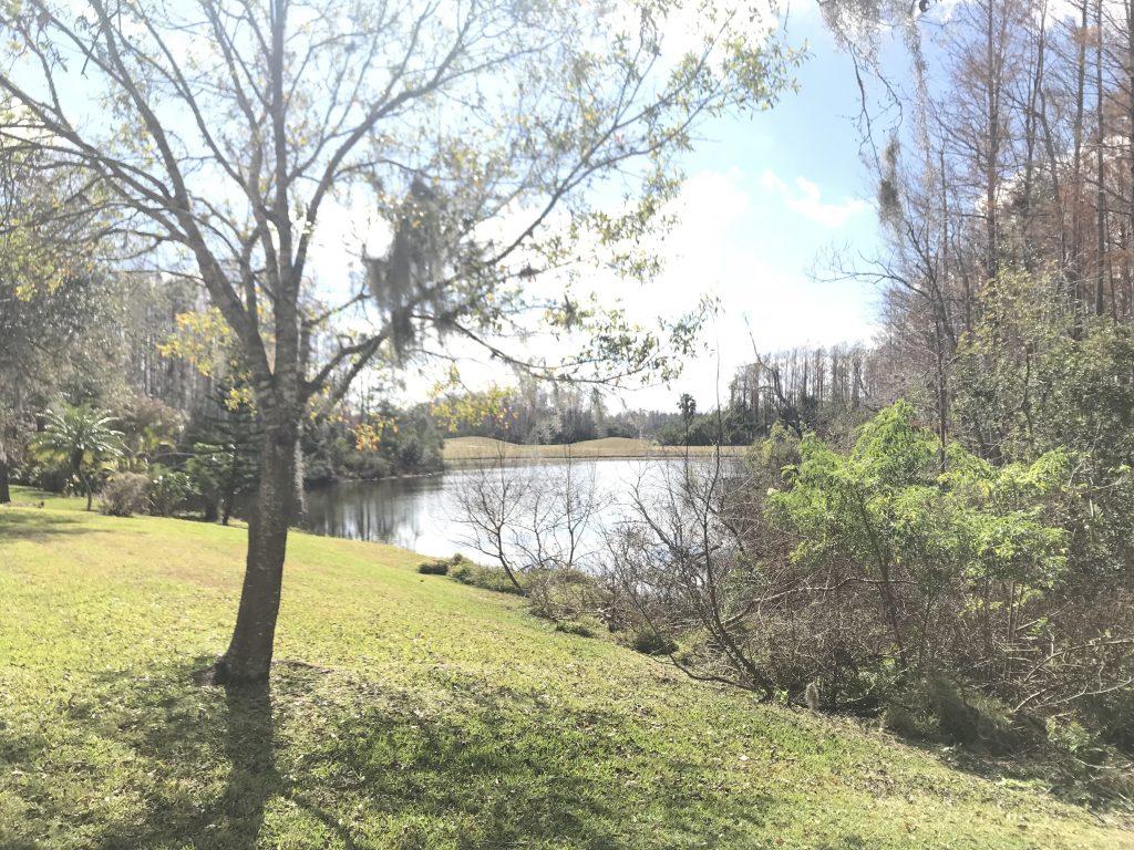 Orlando Property Management 14124-19