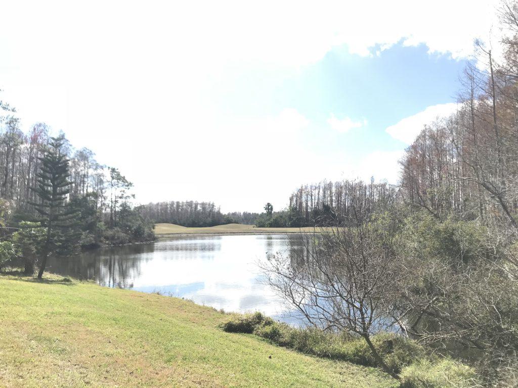 Orlando Property Management 14124-20
