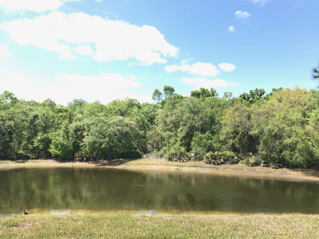 Orlando Property Management 2832-24