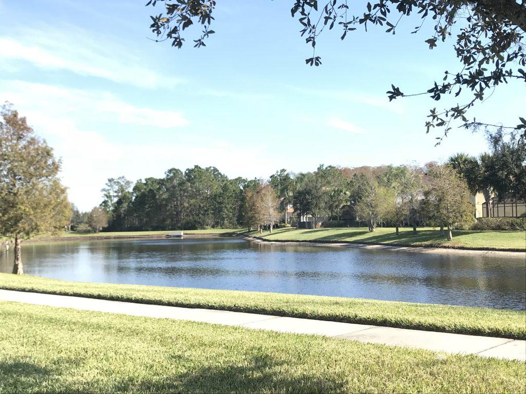 Orlando Property Management 12129-15