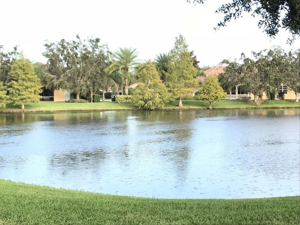 Orlando Property Management 12129-47