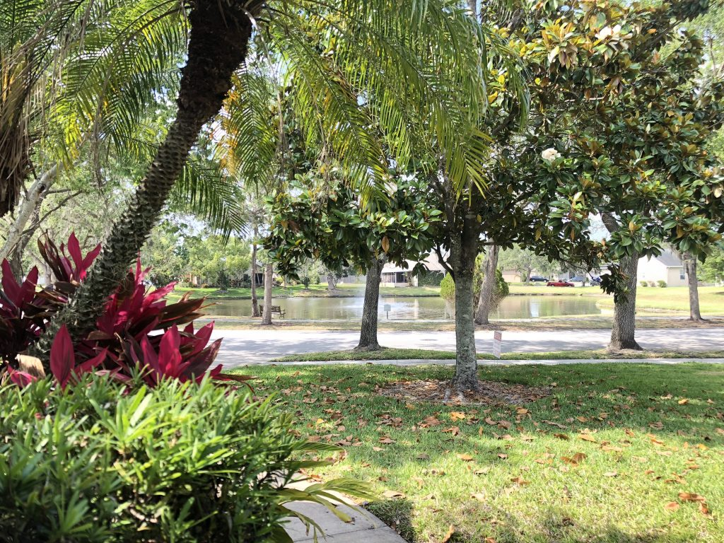 Orlando Property Management 13568-02