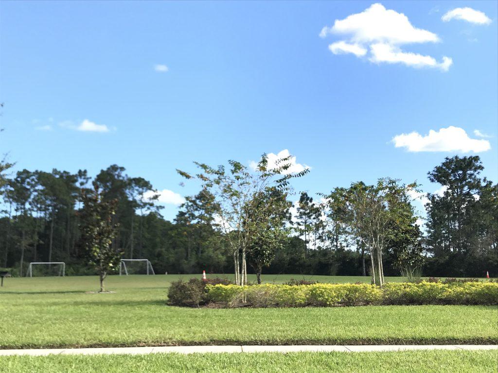 Orlando Property Management 3779-04