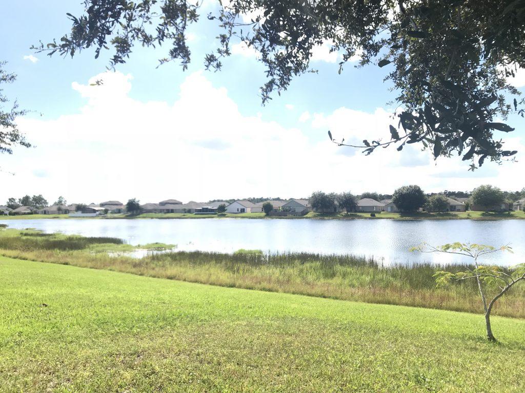 Orlando Property Management 3779-36
