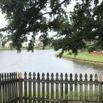 Orlando Property Management 725-33