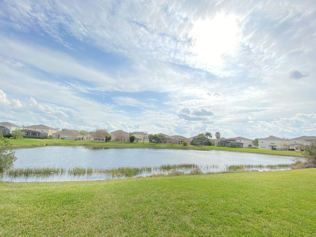 Orlando Property Management 14834-45